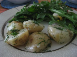 Organic potatoes and dill, local garlic scapes, and home-grown arugula, radishes, and spinach = my politics.